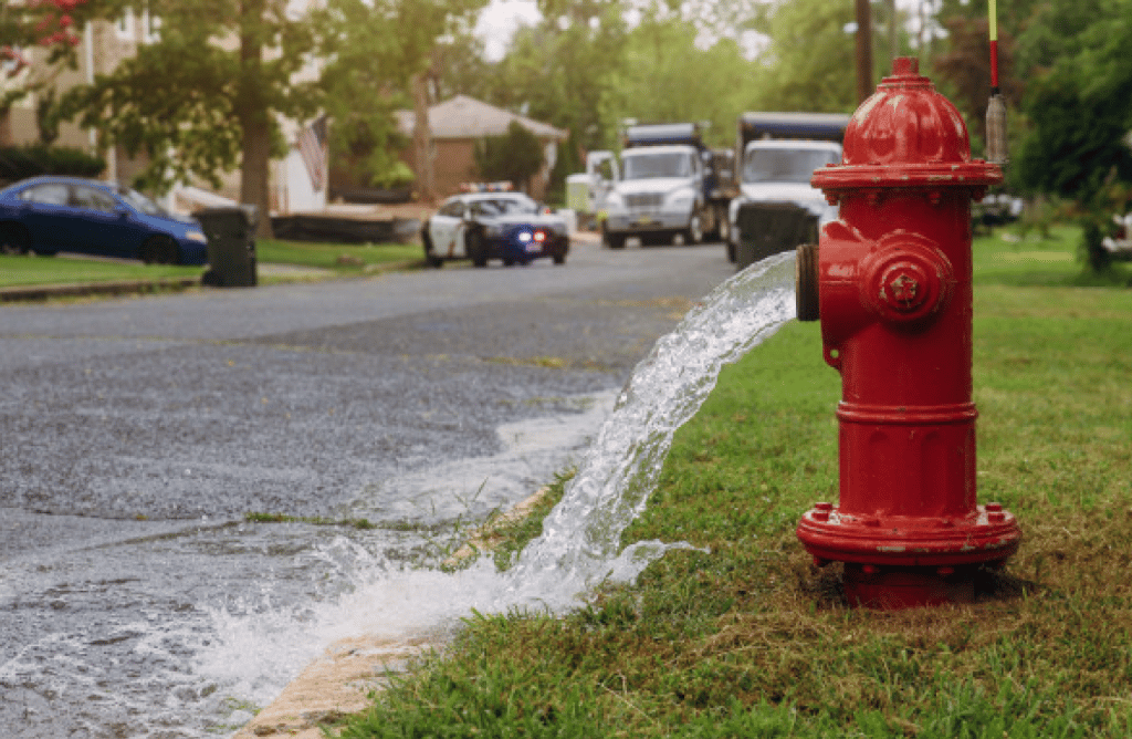 Inspection Report Fire Hydrant Mobile App​